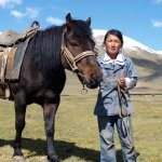 Девочка со своим конем