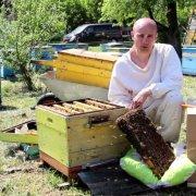 Полный курс видео по пчеловодству от Цебро