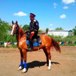 Донской казак на рыжем коне