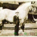 Старая фотография Великого Самсона