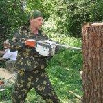 Процесс работы над деревом