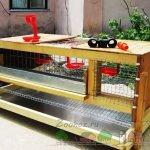 Деревянный домик для выращивания птицы