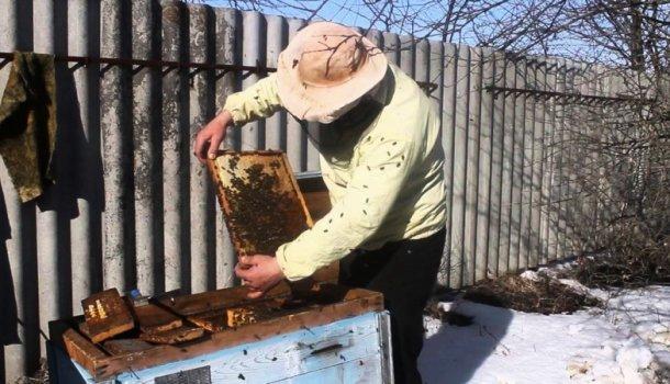 Интересная и полезная информация о сезонном пчеловодстве