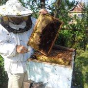Особенности костюма пчеловода и его составляющих: комбинезон, маска, куртка, перчатки и шляпа