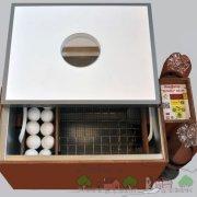Как сделать своими руками инкубатор автоматический для яиц: чертежи с размерами и подробное видео