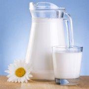 Скисшее молоко и причины его тягучести