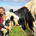 Патти Хансон и корова Блоссом