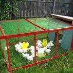 Летнее сооружение для курочек