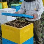 Пчеловод работает с уликом из пенополиуретана