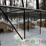 Птицы зимой в домиках
