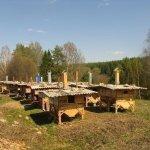 Домашняя ферма с уличным содержанием кроликов