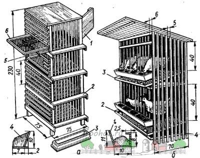 Чертеж клетки для бройлеров