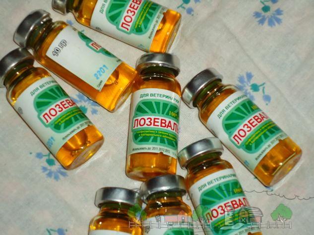 Фото упаковки препарата Лозеваль по 10 мл