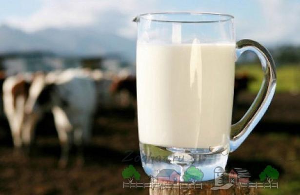 Свежее молоко в графинчике