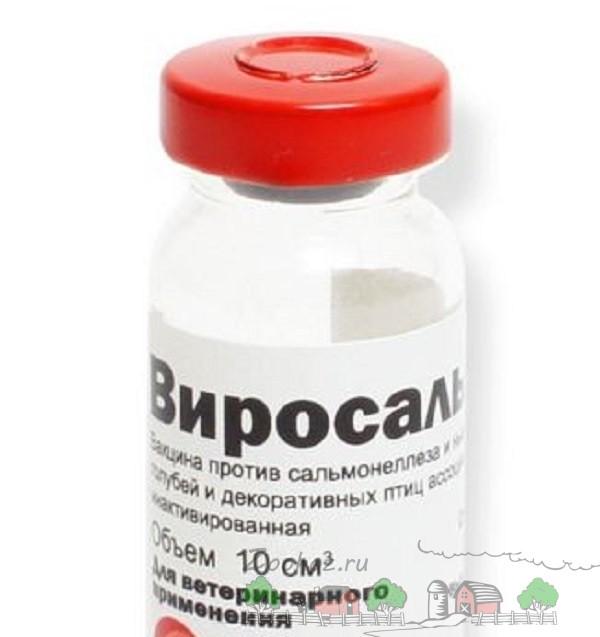Пузырек аптечного препарата Виросальм
