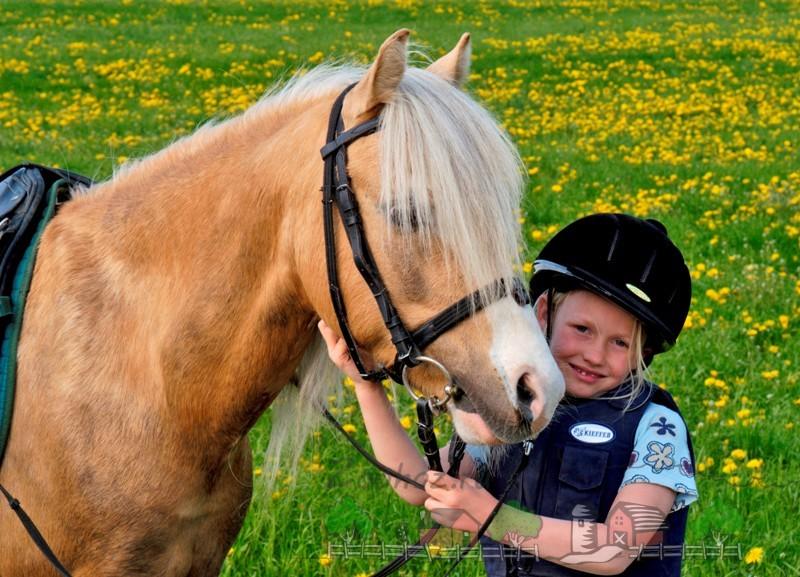 Девочка и запряженный конь