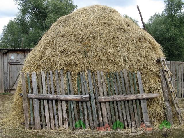 Стог сена в селе