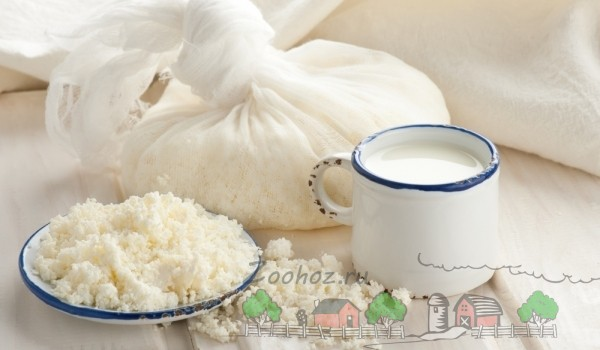 Овечьи молочные продукты