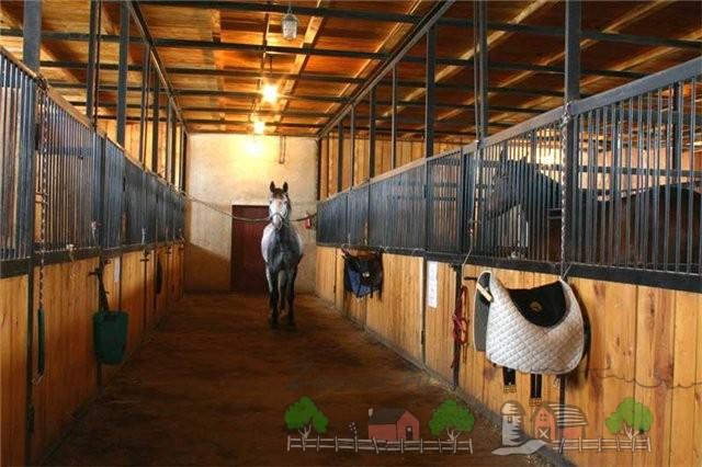 Интерьер конюшни с лошадьми