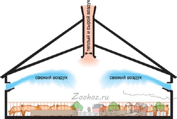Схема вентиляции хлева