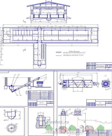 Строительство свинарника на 100 голов: проект и видео