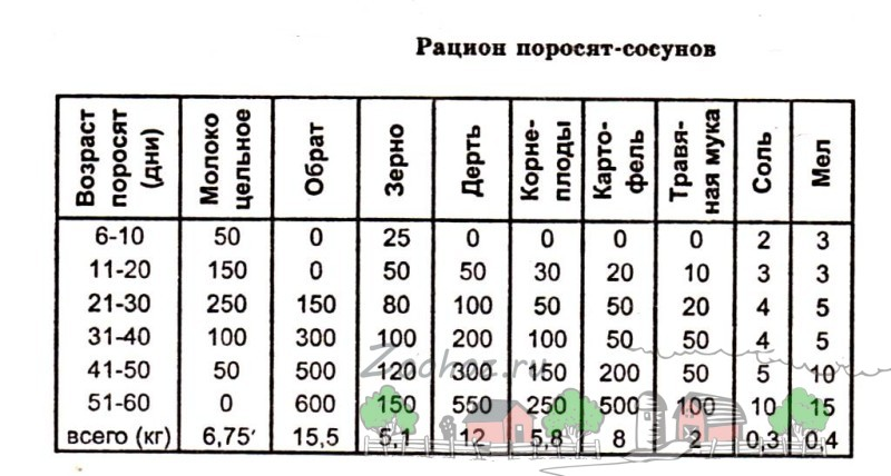 Таблица рациона поросят-сосунов