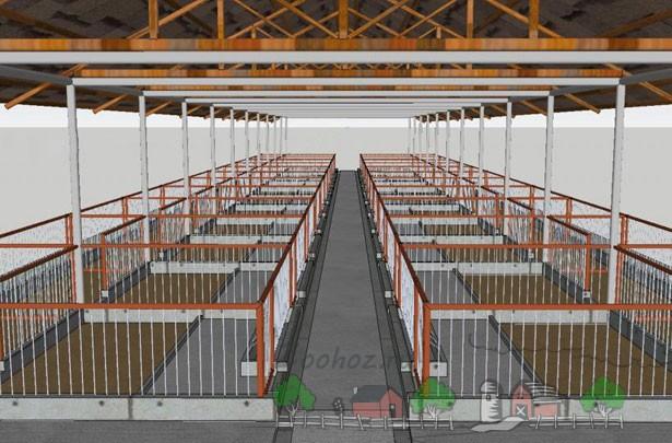 Пример обустройства помещения для свиней