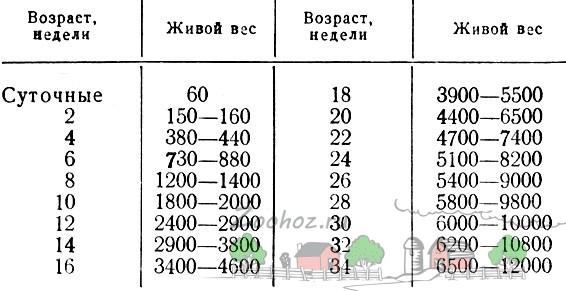 Таблица норм массы по неделям