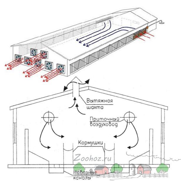 Схема вентиляции свинарника