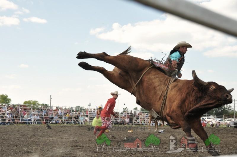 Всадник на быке в прыжке