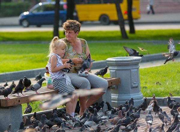 Бабушка и ребенок в окружении птиц