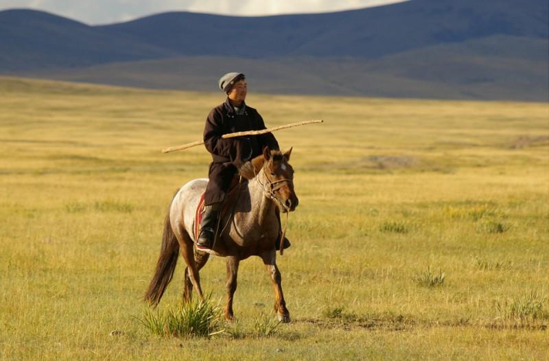 Монгол на лошади в степи
