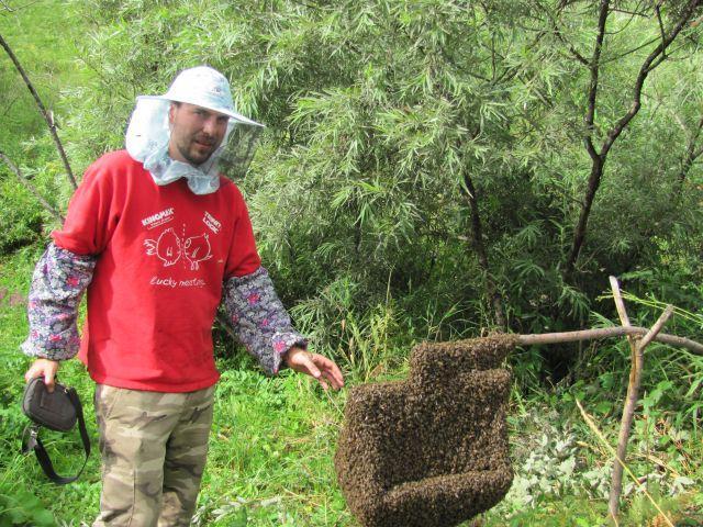 Пчеловод возле роя насекомых