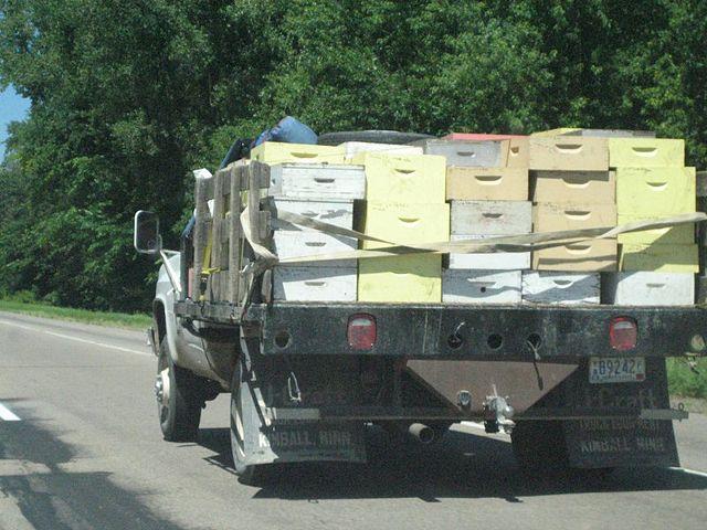 Транспортировка уликов на грузовой машине