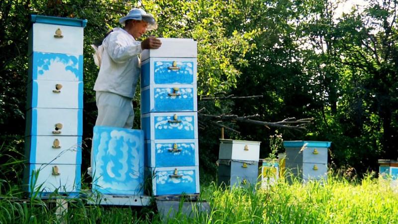 Работа пчеловода с корпусами