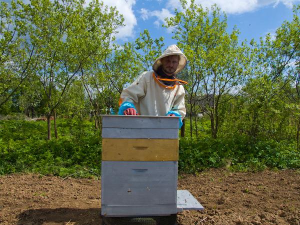 Пчеловод возле своего улика