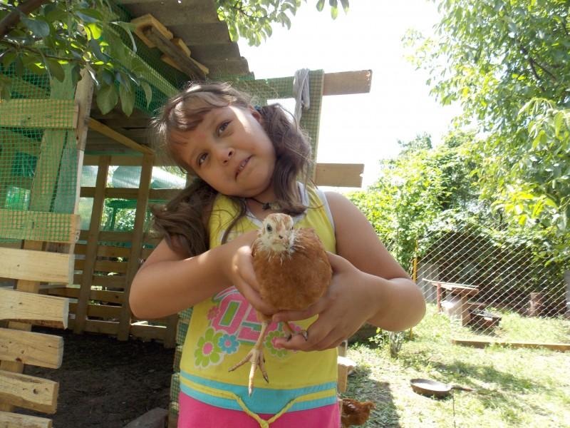 Мои малыши - Фермерский сайт
