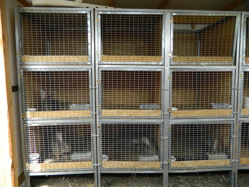 Кролики в металлических клетках на три яруса