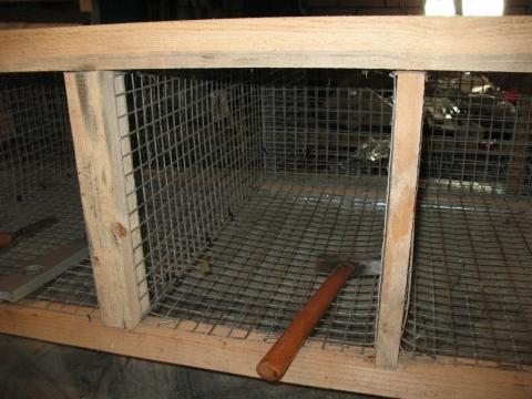 Сеточные ячейки в деревянном каркасе