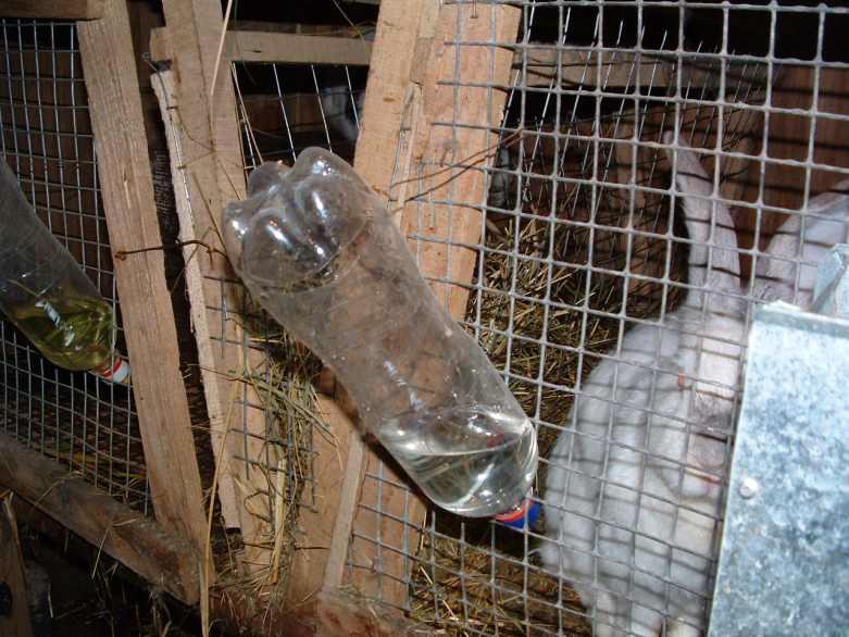 Ниппельные поилки для кроликов своими руками