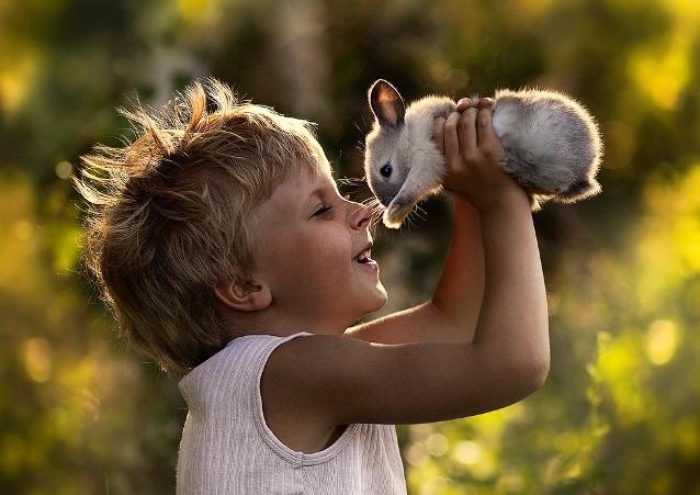 Ребенок играет с кроликом