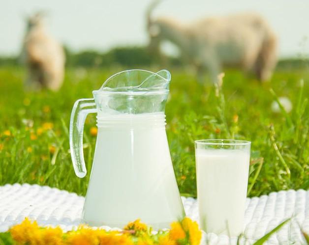 Козье молоко в графине и стакане