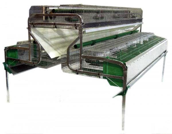 Промышленные клетки для кроликов: обзор, чертежи и фото