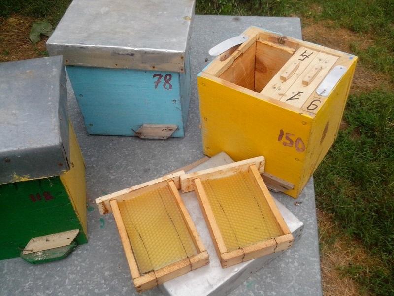 Небольшие пчелиные улья для нуклеусов