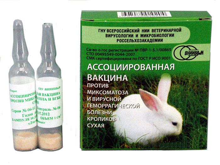 Вакцина против ВГБК и миксоматоза