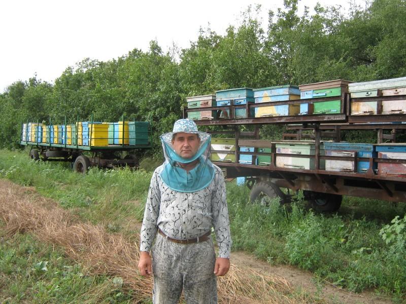 Пчеловод на фоне кочевой пасеки