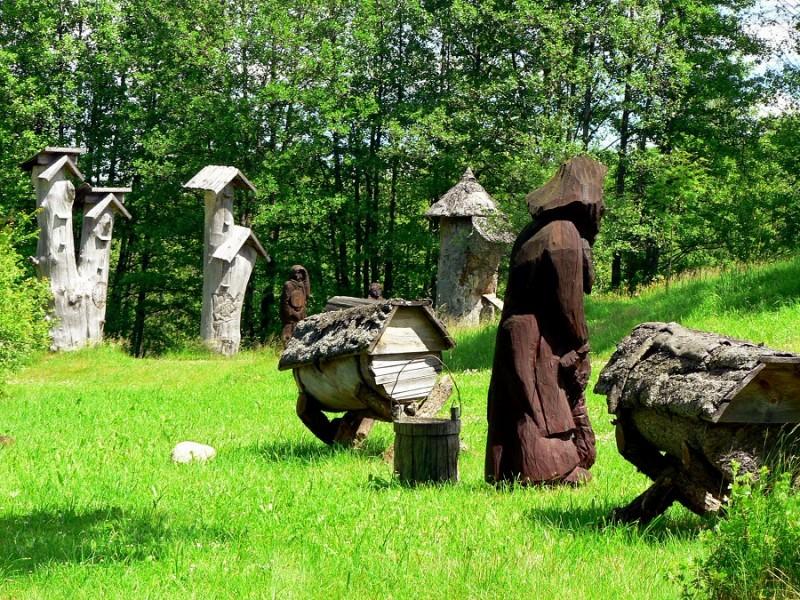 Оригинальные колоды на полянке