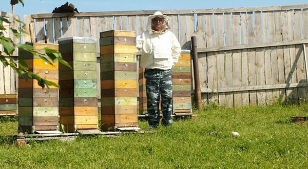 Пчеловод возле своих уликов Удавов