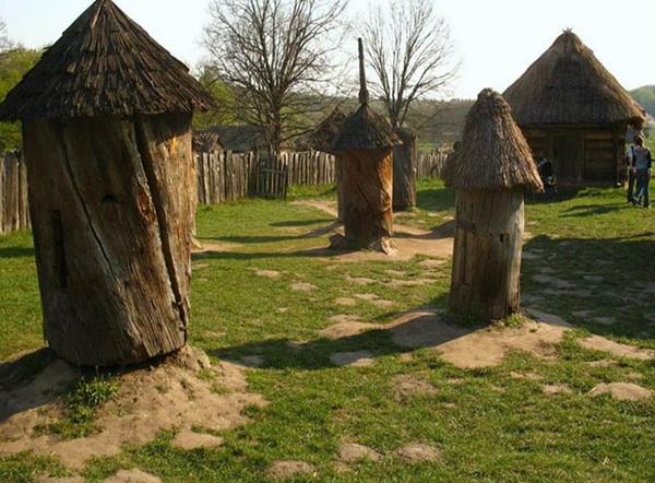 Старинные колоды на поляне
