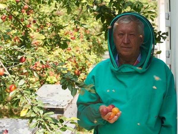 Вячеслав Савин - пчеловод и апитерапевт